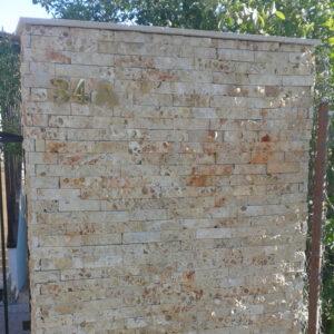 Shellstone de 10 cm (Scapitat scoica)